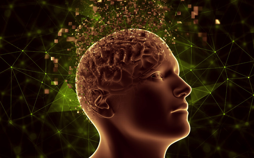 Prendre soin de notre système nerveux avec les huiles essentielles